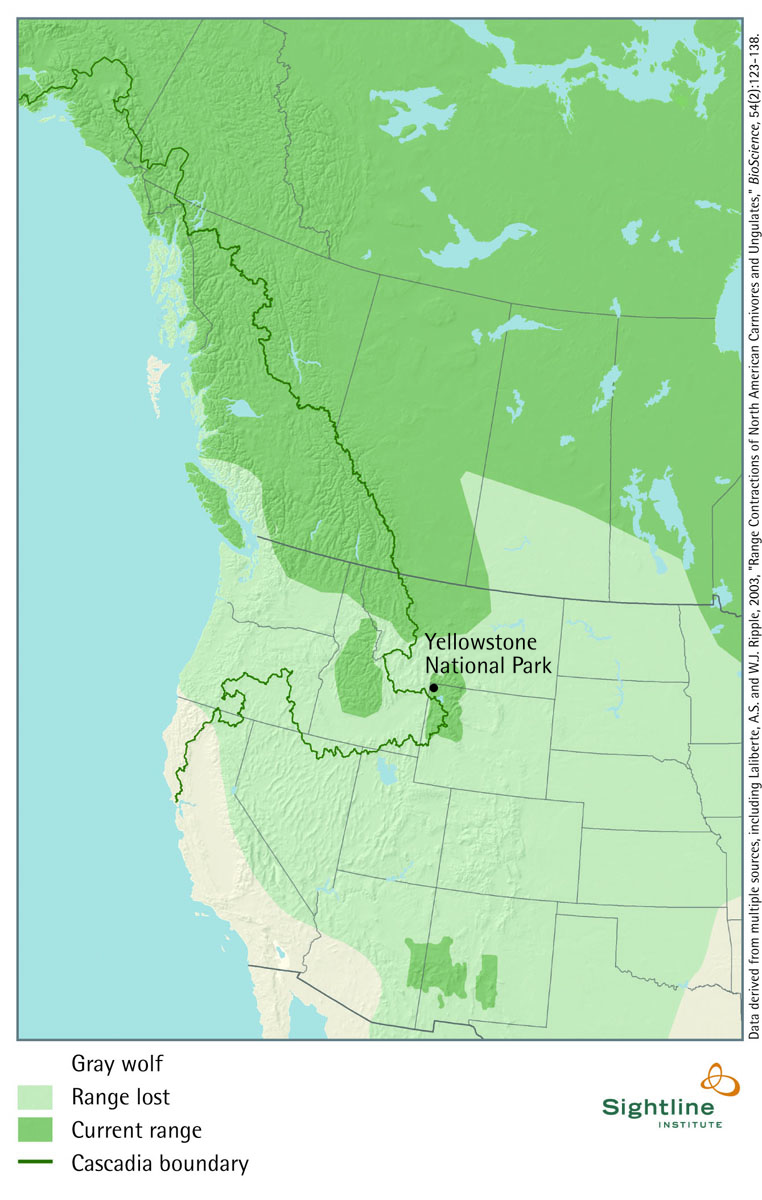 Gray Wolf: Current and Historic Range Map